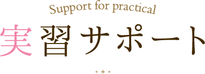 Support for practical 実習サポート